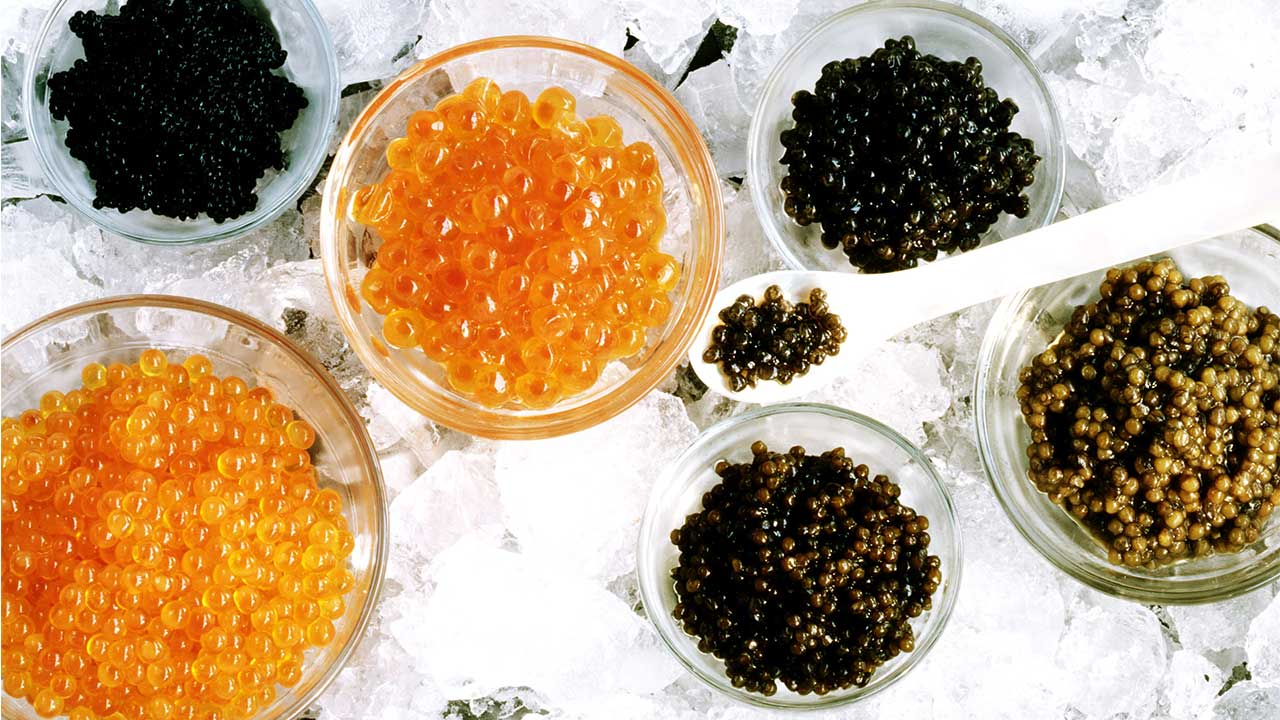 CAVIAR FACTS, ONE OF THE MOST EXPENSIVE FOOD IN THE WORLD
